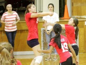 volleyball2b